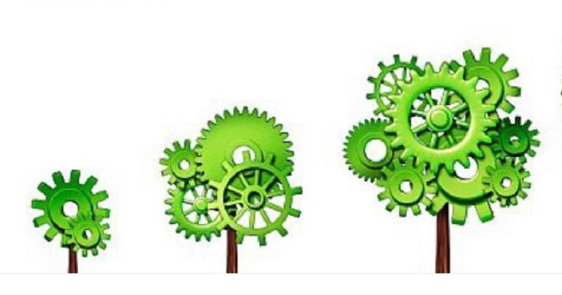 Green economy Marche