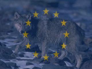 natura e biodiversità : finanziamenti unione europea