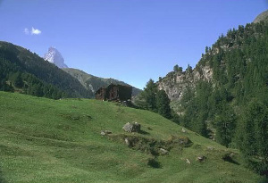 Montagne1