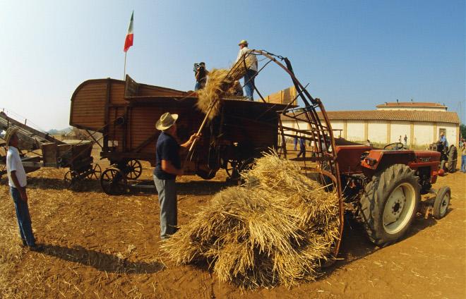 Agrigoltura , Toscana