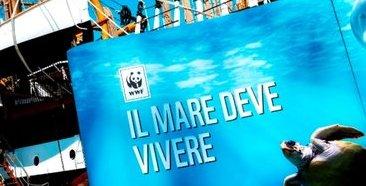 WWF - Vespucci