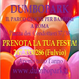 banner-300x300-dumbopark