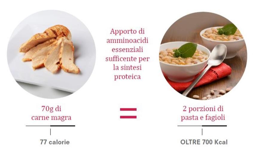 confronto-proteine-carne-proteine-vegetali