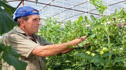 coldiretti-contratto-agricoli
