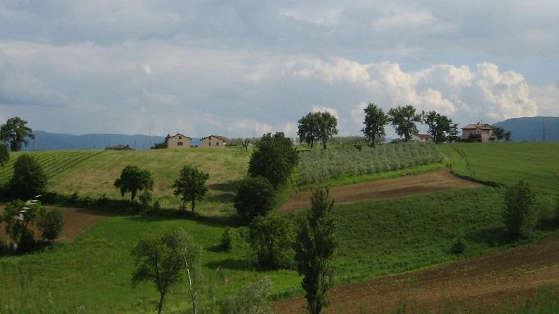 agricoltura maltempo estate