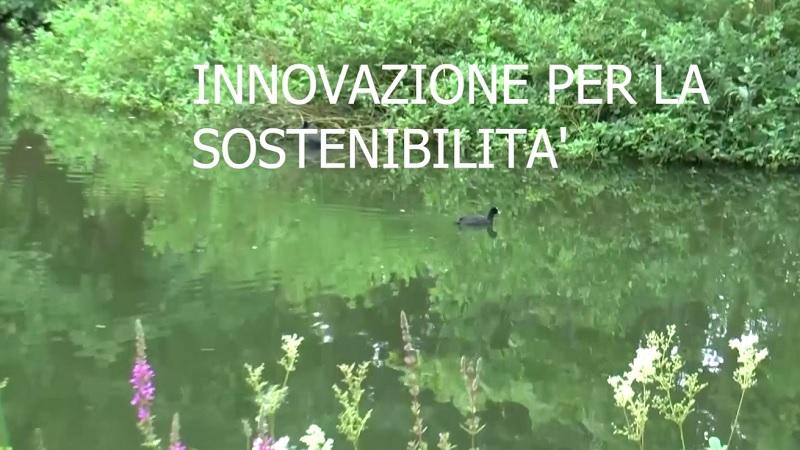 BLUEROAD Innovazione per la sostenibilità